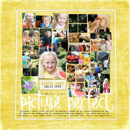 Picture Perfect_forweb